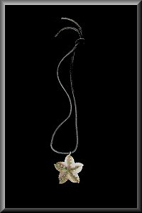 Starfish Shell Pendant Necklaces.